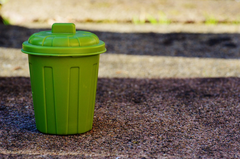 My Green Bin For Surrounding Clean