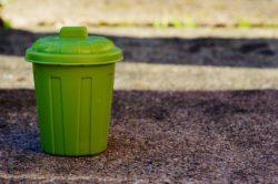 My Green Bin For Surrounding Clean